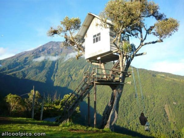 coolest tree house in the world cool pictures
