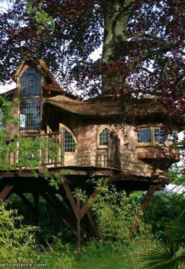 Very cool tree house cool pictures for Really cool houses